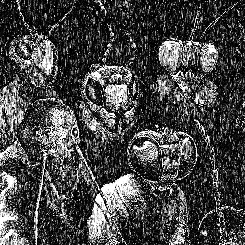 Nicolas Arispe - The Entomology Lesson (Detail 1)