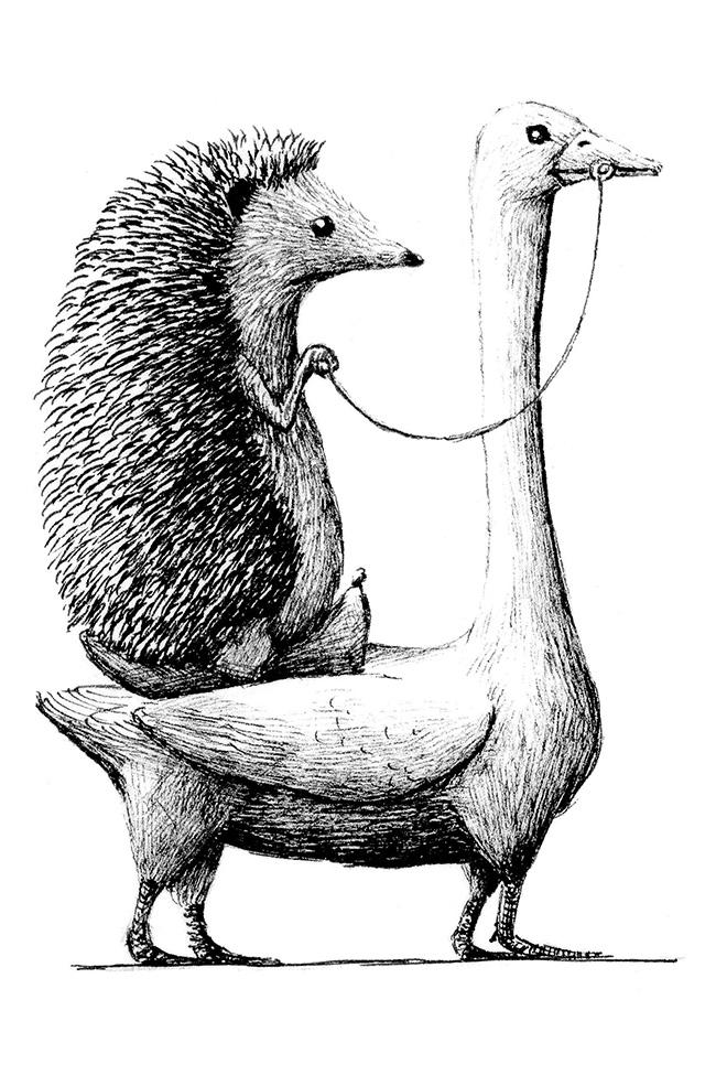 Redmer Hoekstra - Hedgehog on Goose