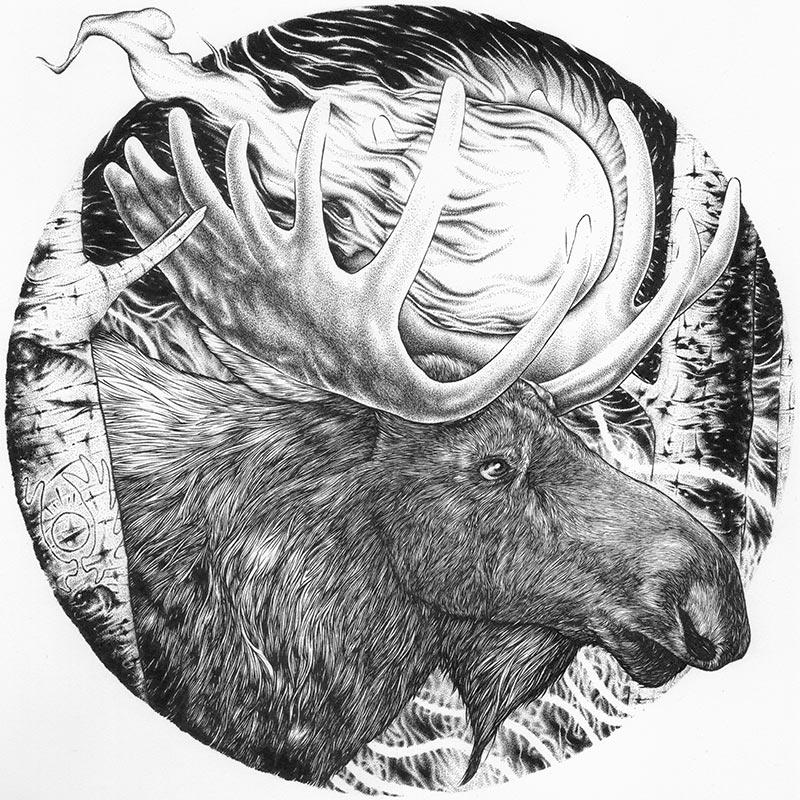 Jason Limberg - Spirit of the Forest