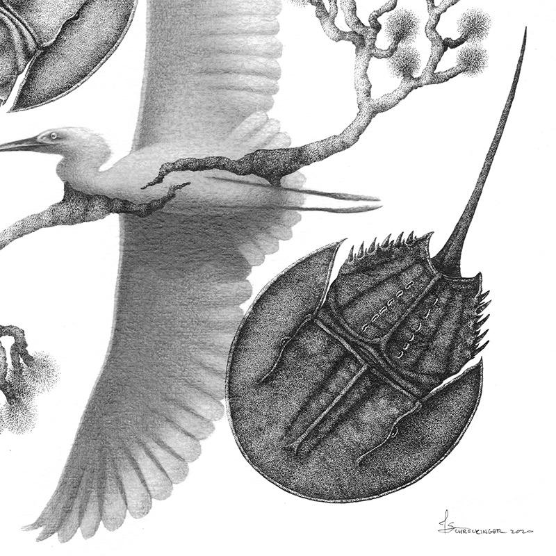 Juliet Schreckinger - Timeless Roots (Detail 2)