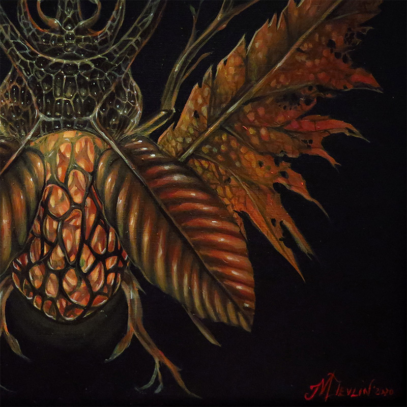 Molly Devlin - Fall Horned Beetle (Detail 2)
