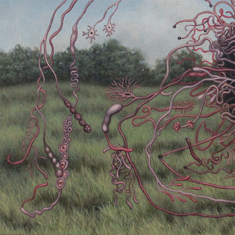 Catriona Secker - Force of Nature (Detail 2)