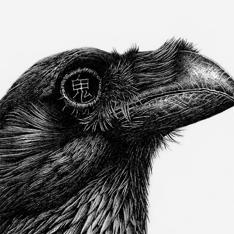 Karl Trewhela - Ghost Raven (Detail 1)