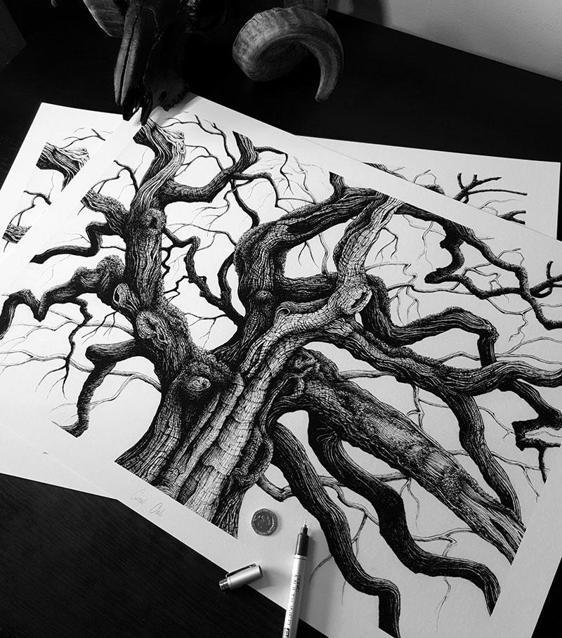 Karl Trewhela - Great Oak (Desk)