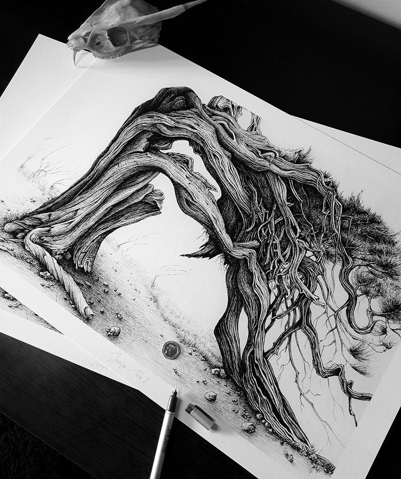 Karl Trewhela - Juniper 1 - Tree 3 (Scale)