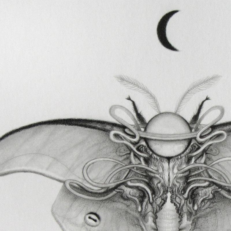 Jamie Wells - Luna (Detail 1)