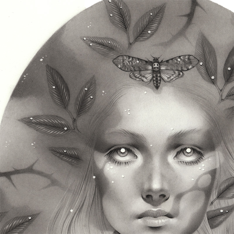 Justyna S. Lewandowska - Wish (Detail 1)