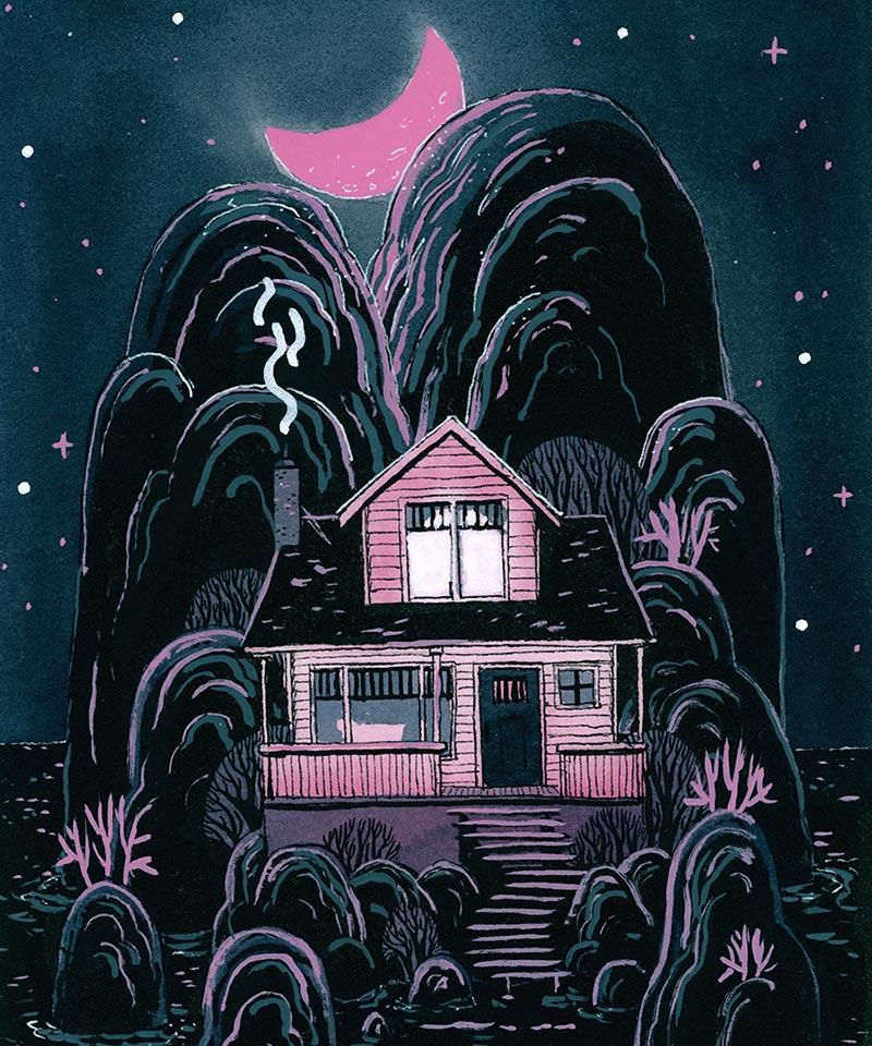 Matt Schu - Pink House