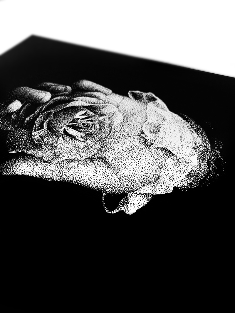 Rostislaw Tsarenko - Darkness Breeds Beauty (Detail 2)