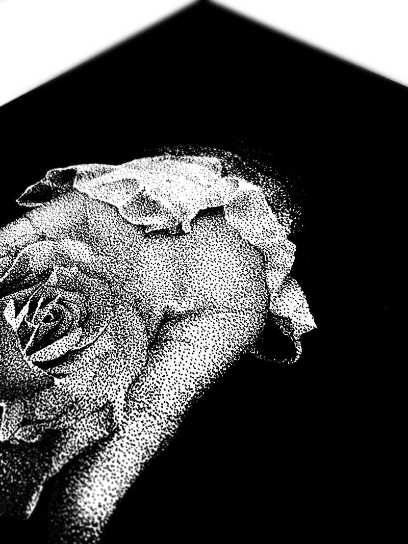 Rostislaw Tsarenko - Darkness Breeds Beauty (Detail 3)