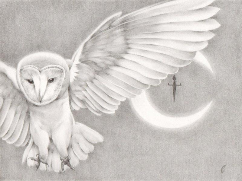 Edward Cao - Artemis