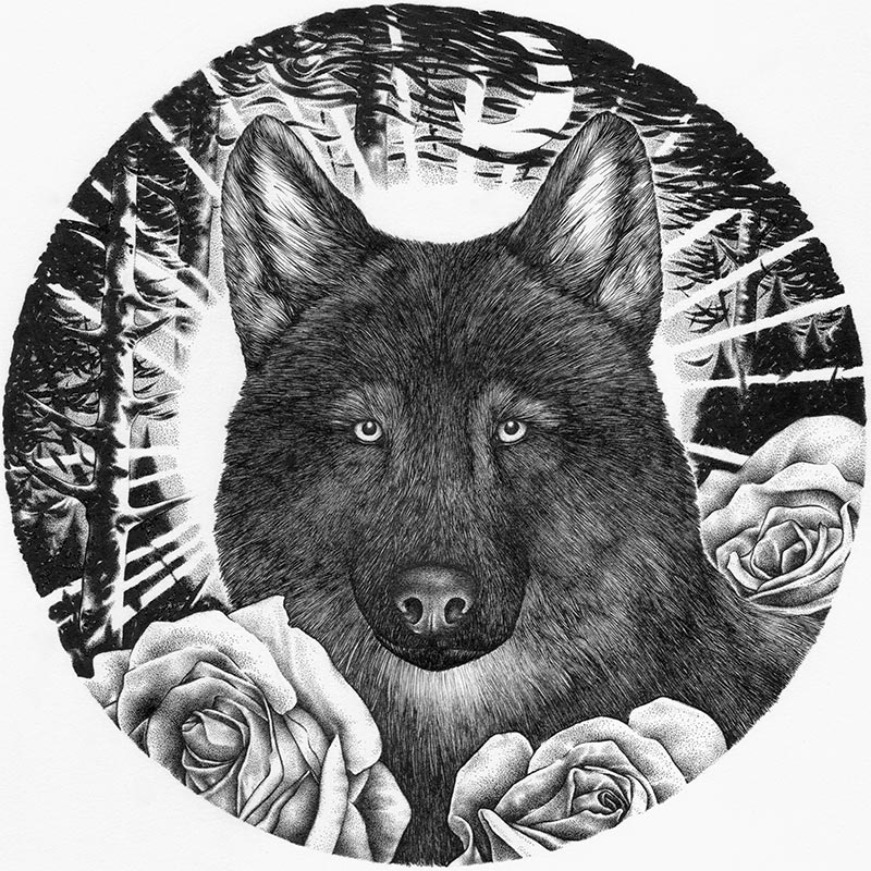 Jason Limberg - Guardian of Everlasting Blooms