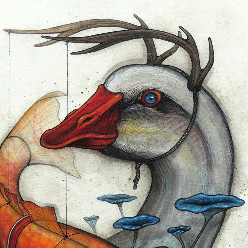 Kaitlin Beckett - Suspended Animation (Detail 1)