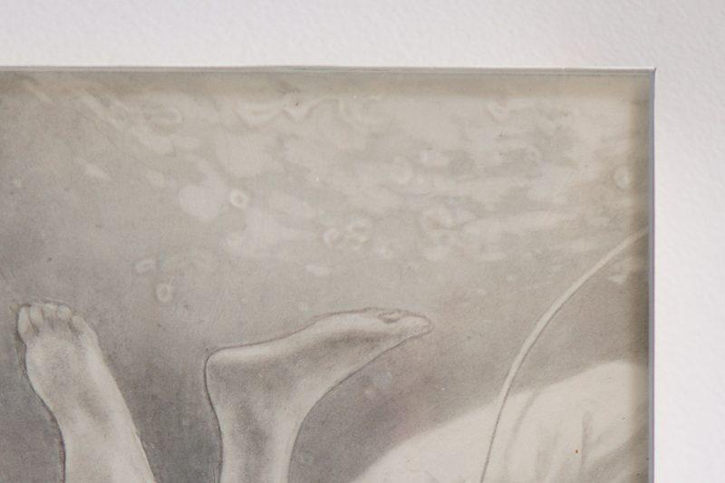 Lachlan Herrick - Ama (Detail 2)