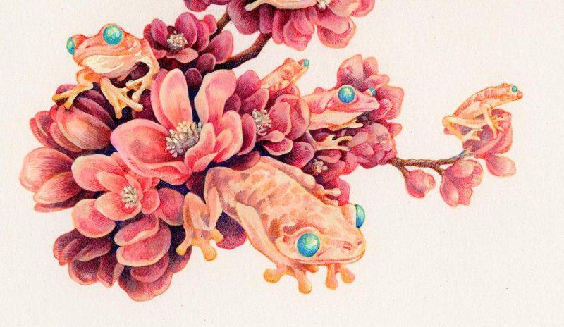 Song Kang - Frog Blossoms (Detail)