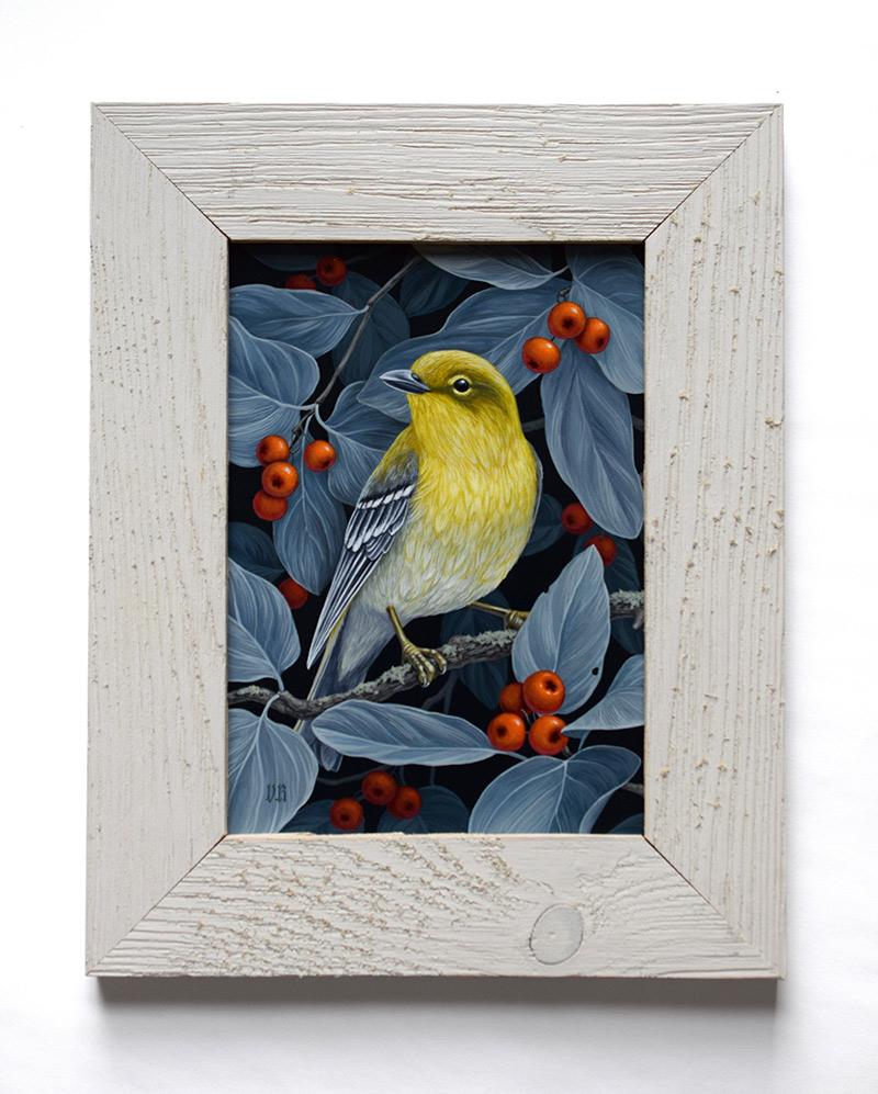 Vasilisa Romanenko - Pine Warbler (Framed)
