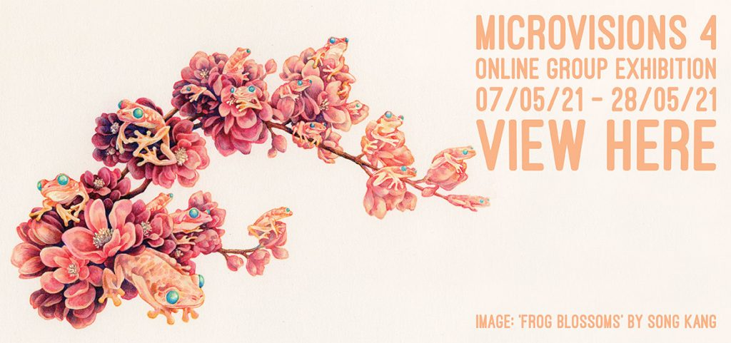 MicroVisions 4 - Website Banner (Song Kang)
