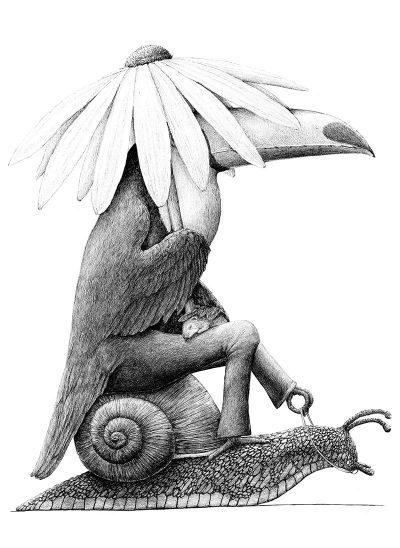 Redmer Hoekstra - Tucan on Snail