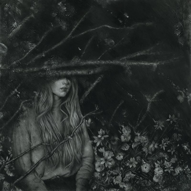 Ethan Price - Midnight in the Ebbing Garden