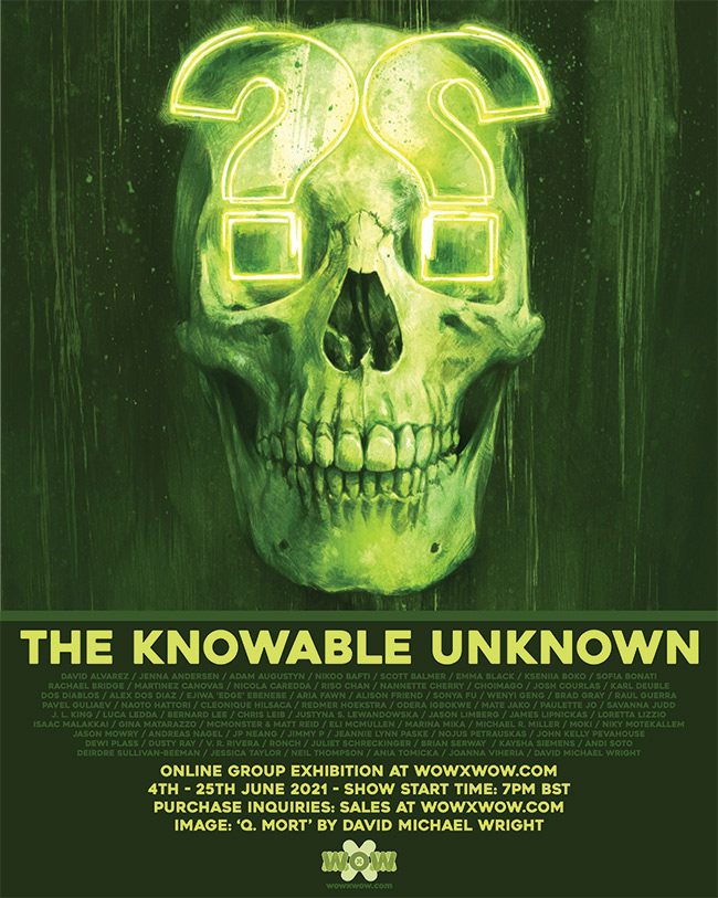 The Knowable Unknown - Flyer (David Michael Wright)