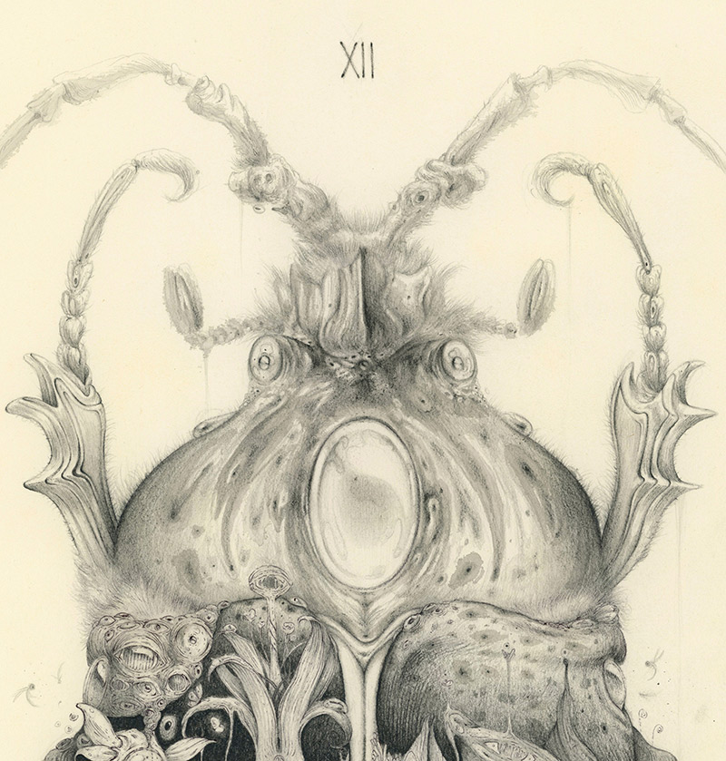 Vorja Sanchez - Metamorphosis (Detail 1)