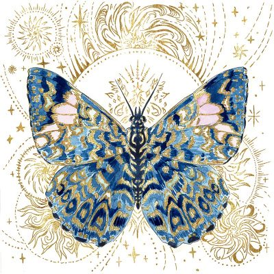 Rachel Quinlan - The Gilded Order- Starry Night Cracker