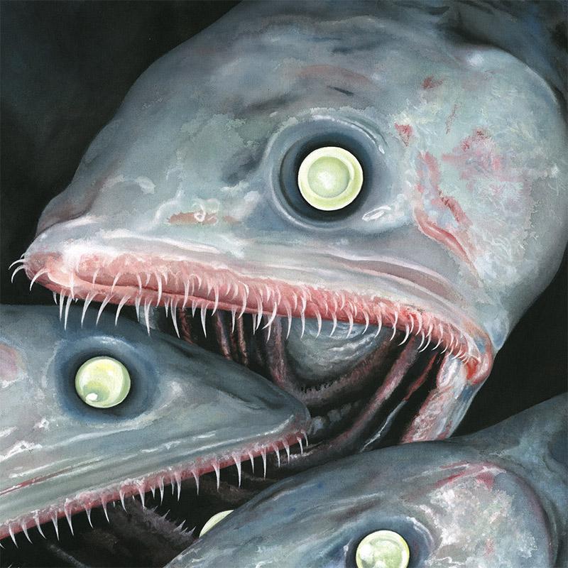 Moki - Fische (Detail 1)