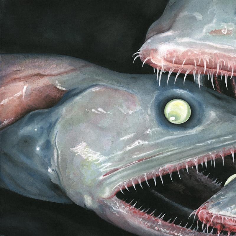 Moki - Fische (Detail 2)