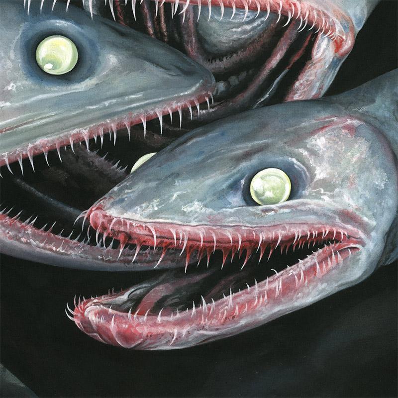 Moki - Fische (Detail 3)
