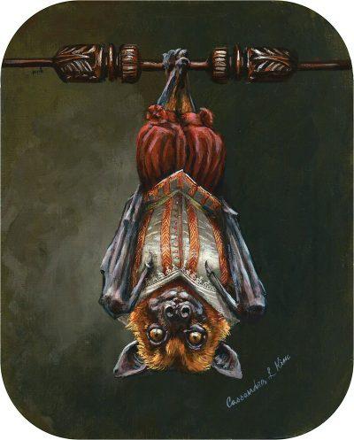 Cassandra Kim - Portrait of a Renaissance Bat