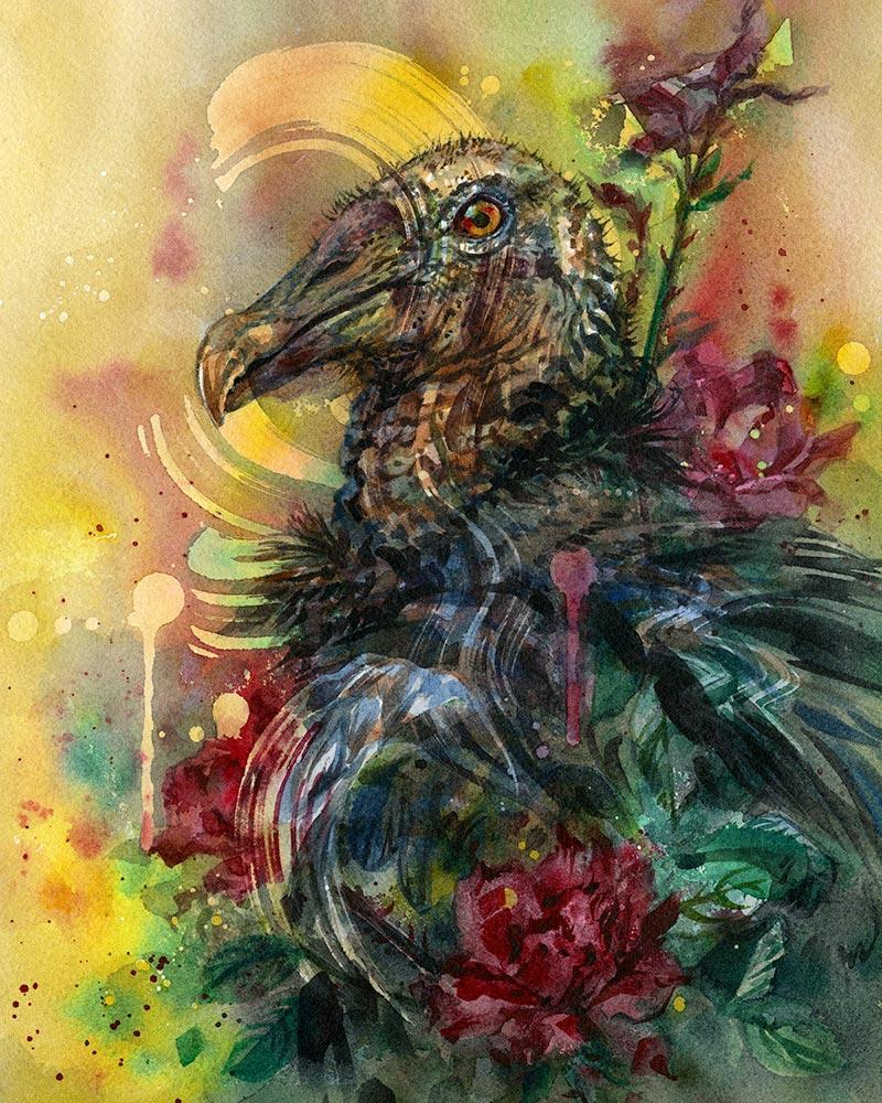 Joanna Barnum - Black Vulture Study