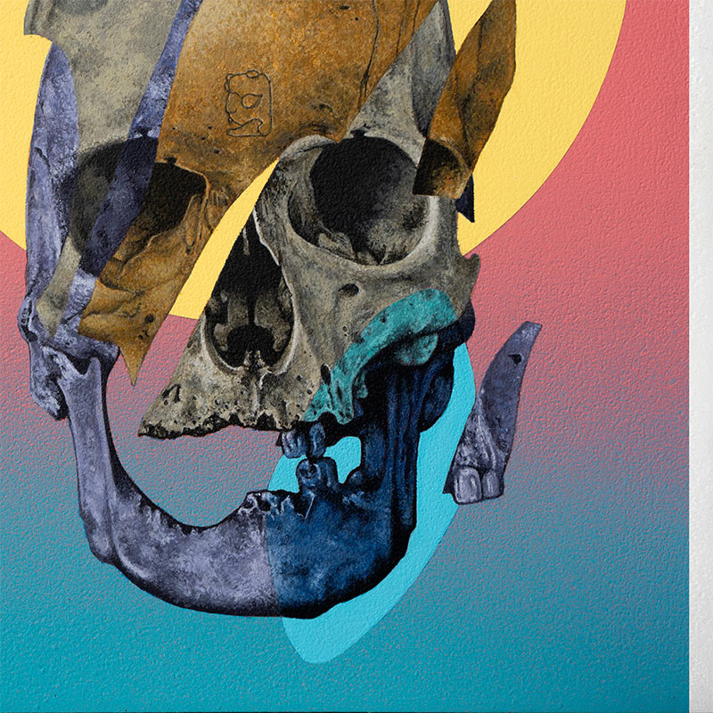 Steve Martinez - Only Fragments (Detail 2)